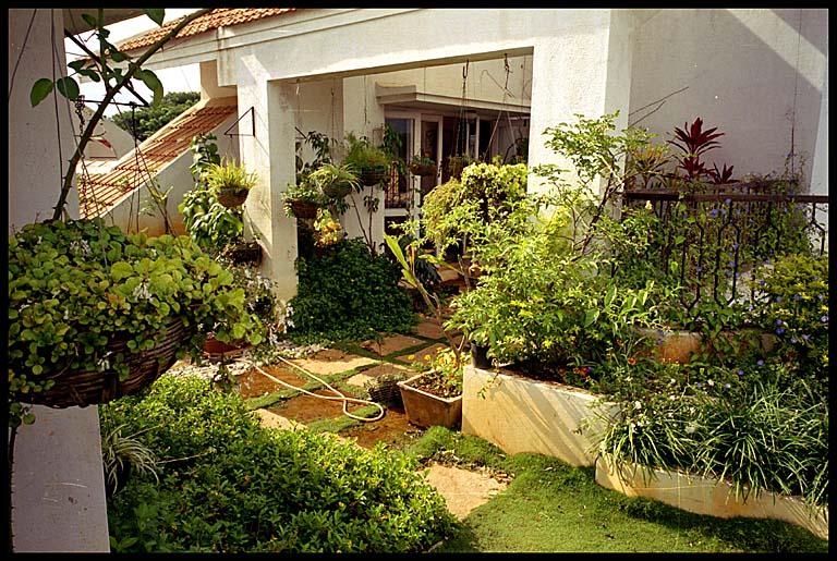 حدائق منزليه ..